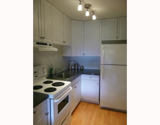Photo 3: Photos: 301 570 E 8TH Avenue in Vancouver: Mount Pleasant VE Condo for sale (Vancouver East)  : MLS(r) # V812547