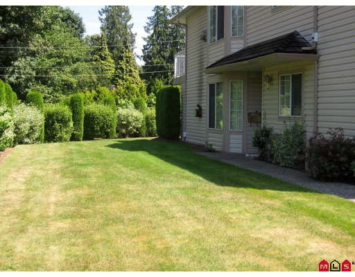 "Main Photo: 59 3110 TRAFALGAR Street in Abbotsford: Central Abbotsford Townhouse for sale in ""NORTHVIEW"" : MLS® # F2914124"