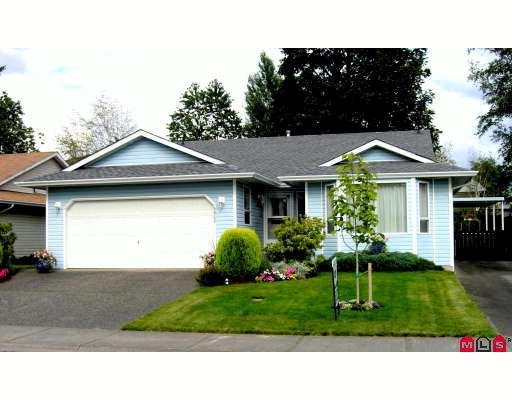 Main Photo: 5952 WILKINS Drive in Sardis: Sardis West Vedder Rd House for sale : MLS(r) # H2804269