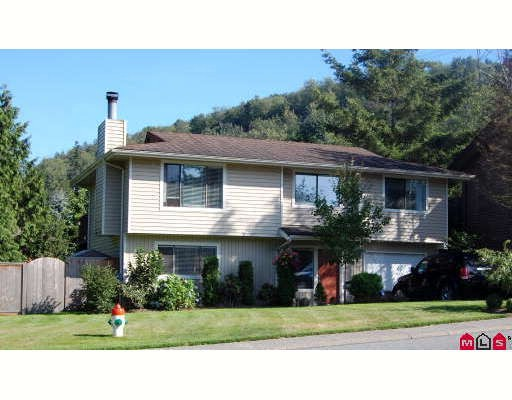 Main Photo: 35208 MCKEE Road in Abbotsford: Abbotsford East House for sale : MLS(r) # F2919026