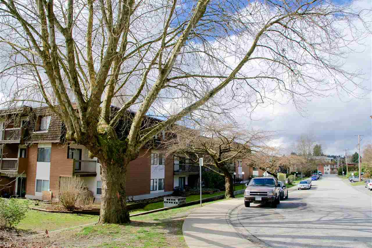 FEATURED LISTING: 312 - 33850 FERN Street Abbotsford
