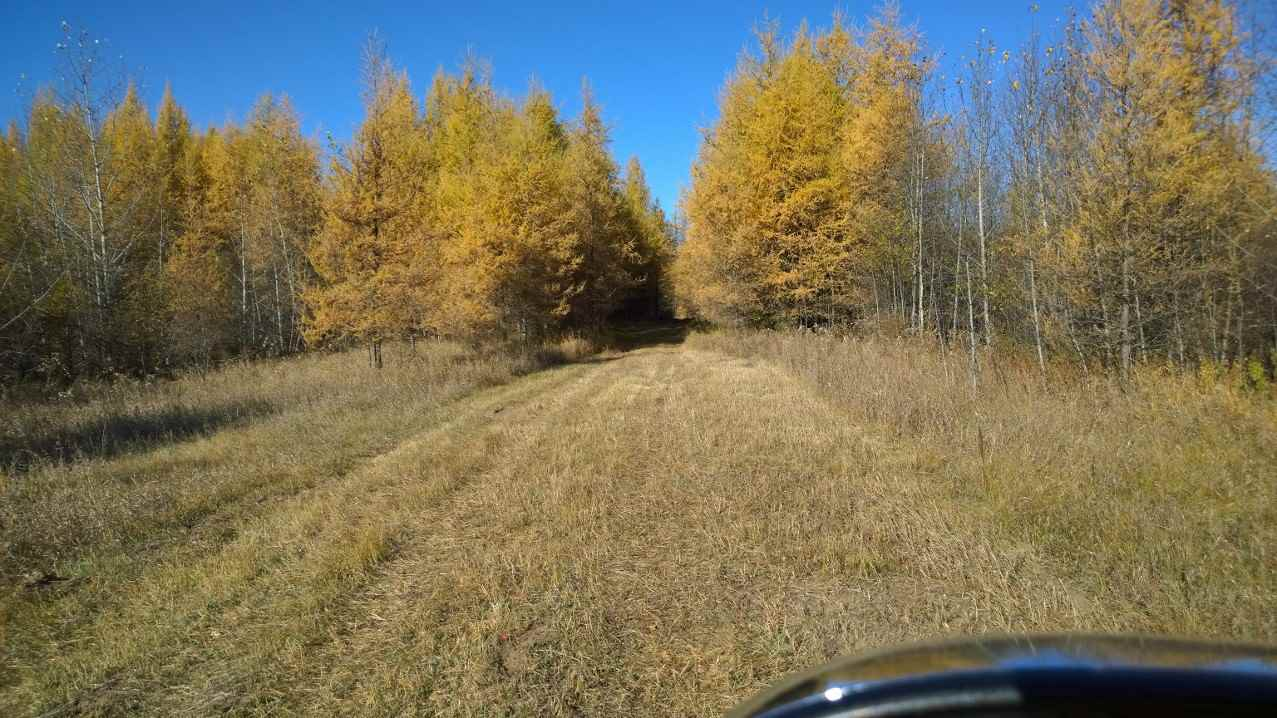 FEATURED LISTING: #2-51223 RGE RD 270 Road Rural Parkland County