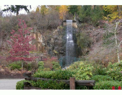 "Main Photo: 95 35287 OLD YALE Road in Abbotsford: Abbotsford East Townhouse for sale in ""THE FALLS"" : MLS® # F2926351"