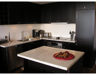 "Main Photo: 905 821 CAMBIE Street in Vancouver: Downtown VW Condo for sale in ""RAFFLES"" (Vancouver West)  : MLS®# V761811"