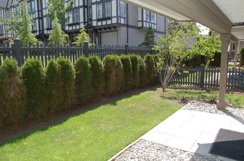 "Photo 11: 72 8089 209TH Street in Langley: Willoughby Heights Townhouse for sale in ""ARBOREL PARK"" : MLS® # F2911425"
