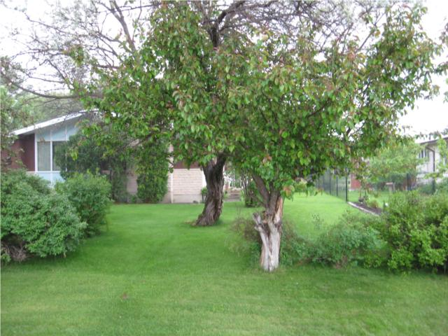 Photo 3:  in BIRDSHILL: Birdshill Area Residential for sale (North East Winnipeg)  : MLS(r) # 1011197