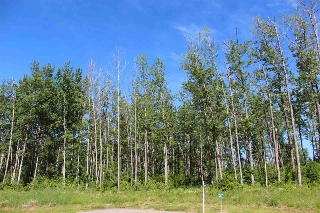Main Photo: 37, 53526 Range Road 275 N: Rural Parkland County Rural Land/Vacant Lot for sale : MLS(r) # E4023146