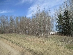 Main Photo: RURAL LAND: Rural Westlock County Rural Land/Vacant Lot for sale : MLS(r) # E4062539