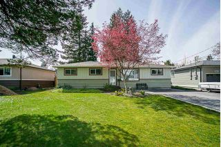 Main Photo: 11677 STEEVES Street in Maple Ridge: Southwest Maple Ridge House for sale : MLS®# R2274693