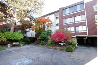 "Main Photo: 210 8740 NO. 1 Road in Richmond: Boyd Park Condo for sale in ""Apple Green"" : MLS®# R2316821"