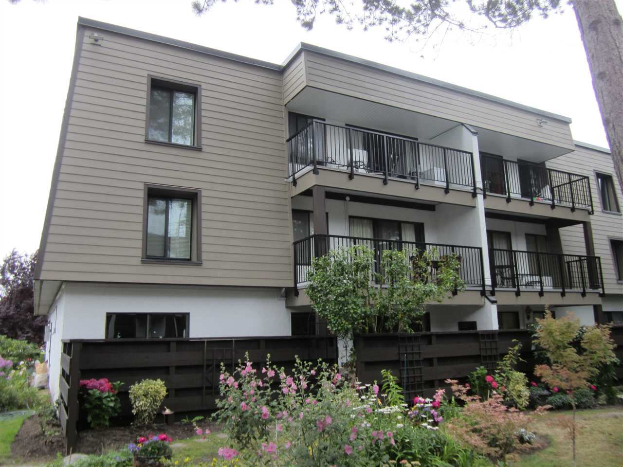 "Main Photo: 228 8880 NO 1 Road in Richmond: Boyd Park Condo for sale in ""APPLE GREENE"" : MLS® # R2103564"