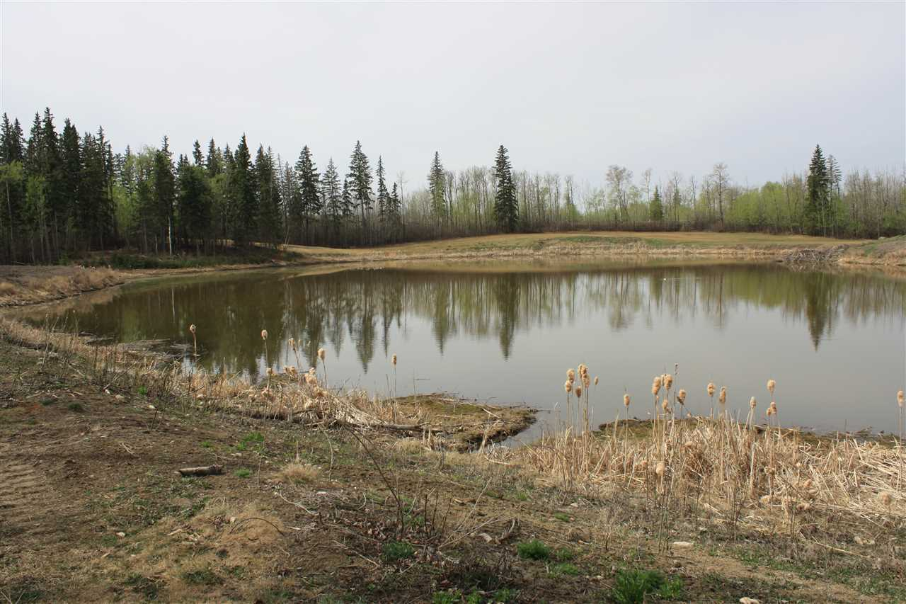 Photo 15: 13240 199 Street in Edmonton: Zone 59 Vacant Lot for sale : MLS(r) # E4066934