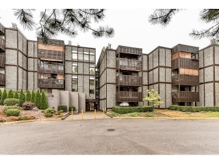 "Main Photo: 217 9672 134 Street in Surrey: Whalley Condo for sale in ""PARKWOODS"" (North Surrey)  : MLS(r) # R2172876"