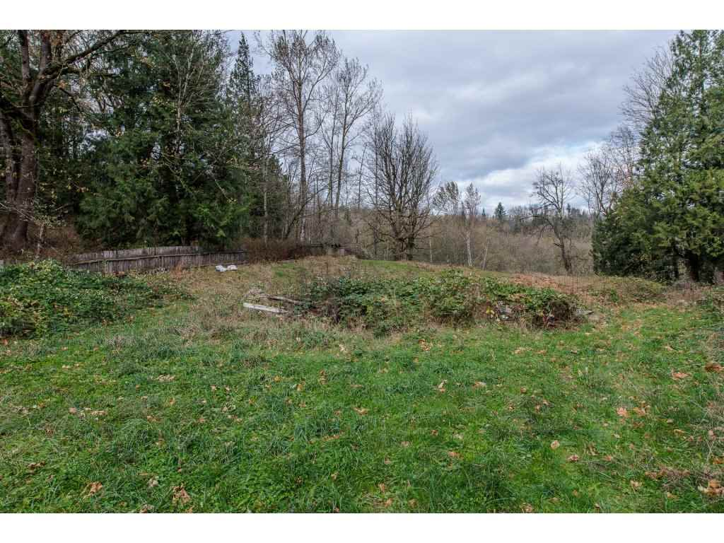 Photo 20: Photos: 37471 ATKINSON Road in Abbotsford: Sumas Mountain House for sale : MLS® # R2220193