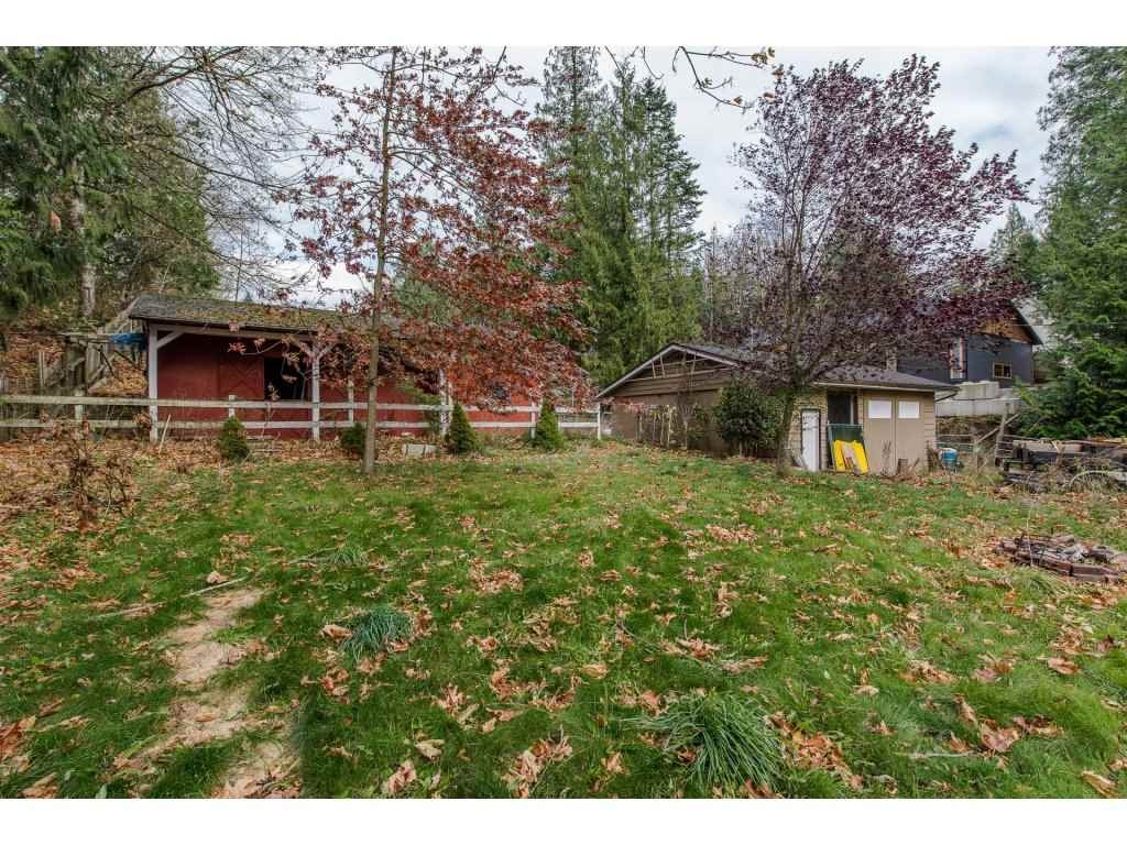 Photo 19: Photos: 37471 ATKINSON Road in Abbotsford: Sumas Mountain House for sale : MLS® # R2220193