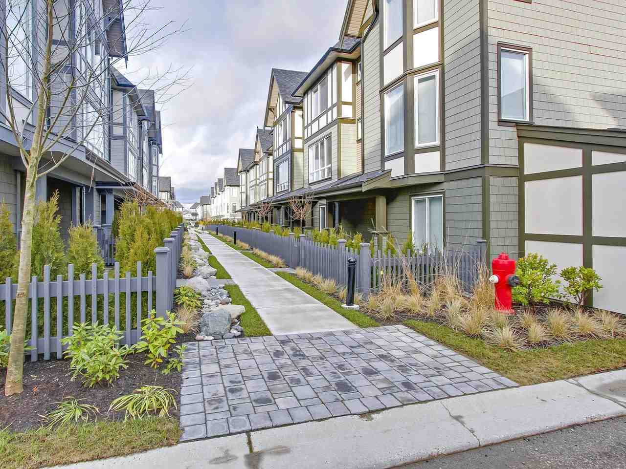 "Main Photo: 36 8138 204 Street in Langley: Willoughby Heights Townhouse for sale in ""Ashbury & Oak"" : MLS®# R2235777"