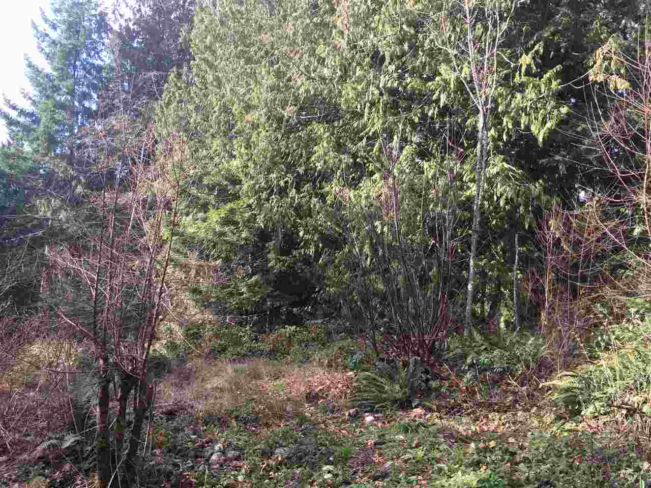 "Photo 6: Photos: LOT 1 GRANDVIEW Road in Gibsons: Gibsons & Area Home for sale in ""BONNIEBROOK"" (Sunshine Coast)  : MLS®# R2239418"