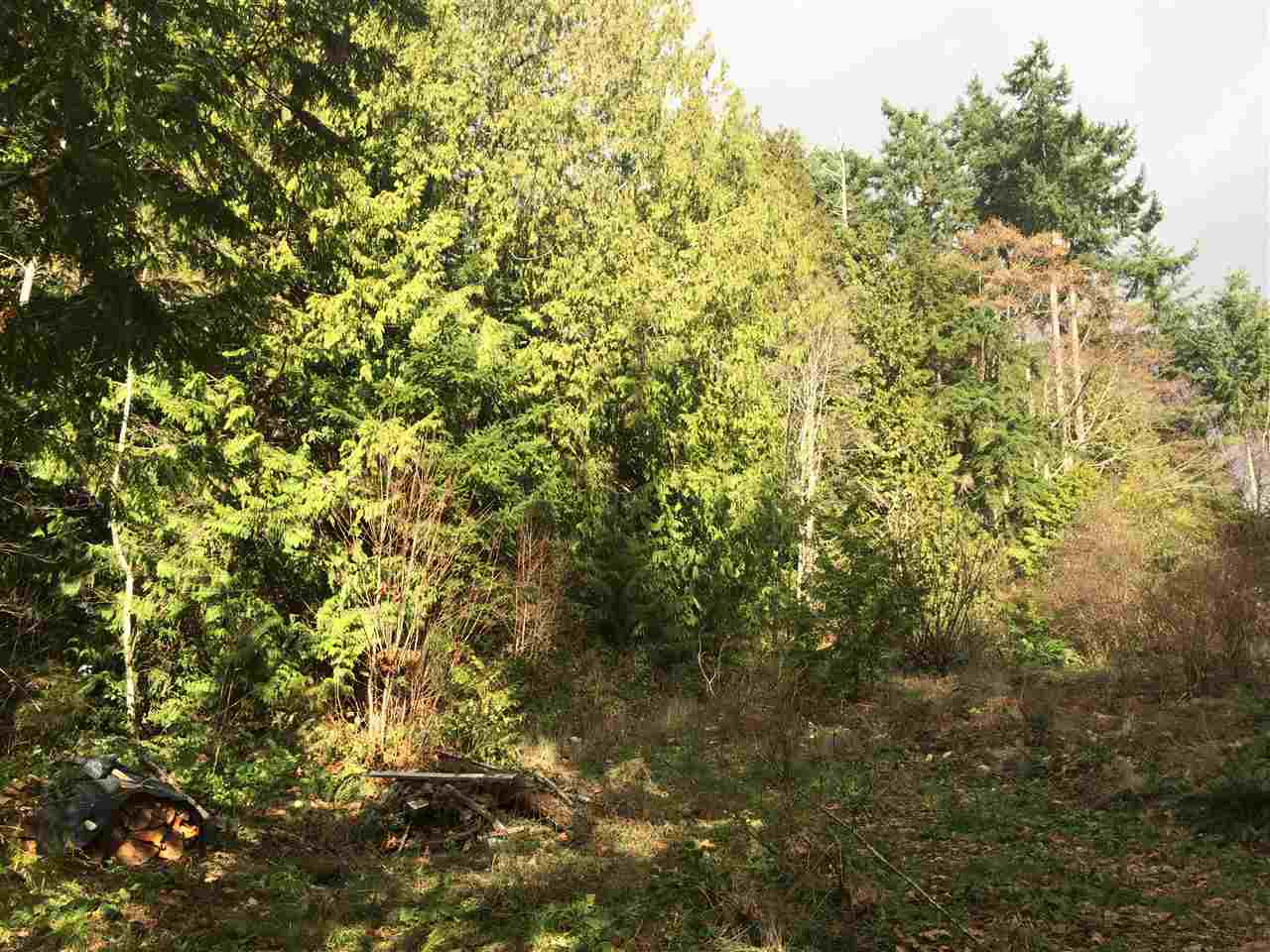 "Photo 4: Photos: LOT 1 GRANDVIEW Road in Gibsons: Gibsons & Area Home for sale in ""BONNIEBROOK"" (Sunshine Coast)  : MLS®# R2239418"