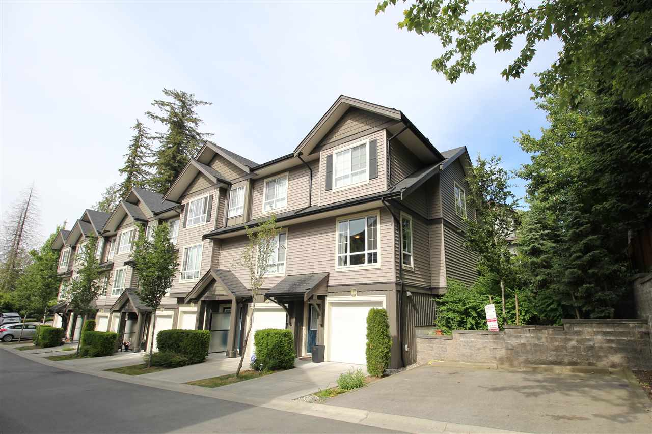 "Main Photo: 34 4967 220 Street in Langley: Murrayville Townhouse for sale in ""Winchester"" : MLS®# R2275633"