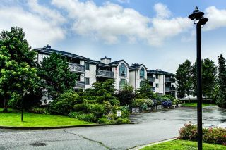 "Main Photo: 305 19121 FORD Road in Pitt Meadows: Central Meadows Condo for sale in ""Edgeford Manor"" : MLS®# R2288007"