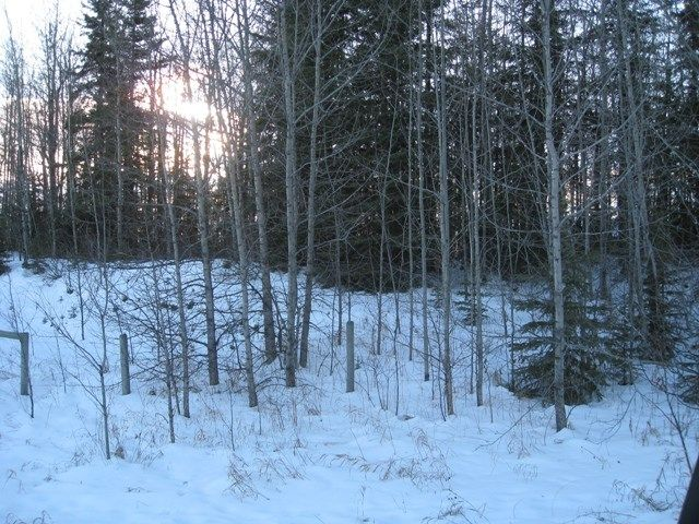 Main Photo: 13 54126 Rge Rd 52: Rural Lac Ste. Anne County Rural Land/Vacant Lot for sale : MLS® # E4064171