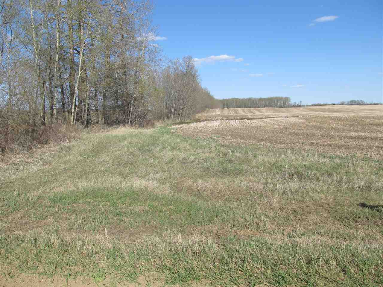 Main Photo: rr 205 north of hwy 18: Rural Thorhild County Rural Land/Vacant Lot for sale : MLS(r) # E4070447