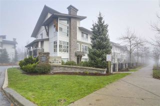 "Main Photo: 81 6671 121 Street in Surrey: West Newton Townhouse for sale in ""Salus"" : MLS® # R2227736"