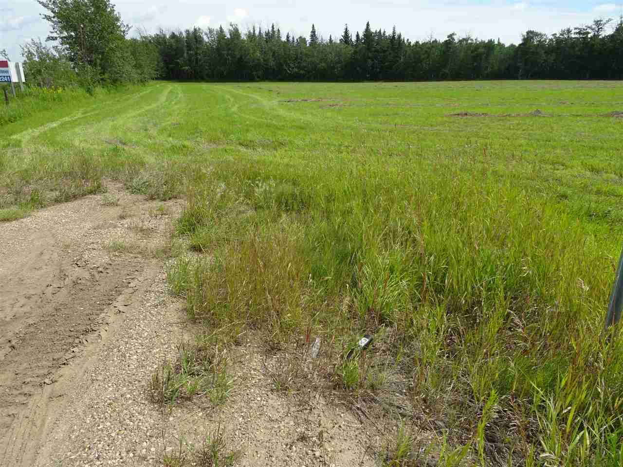 Main Photo: Hwy 28 RR 210: Rural Thorhild County Rural Land/Vacant Lot for sale : MLS® # E4092750
