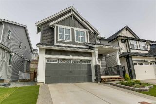 Main Photo: 10442 MCEACHERN Street in Maple Ridge: Albion House for sale : MLS®# R2257869