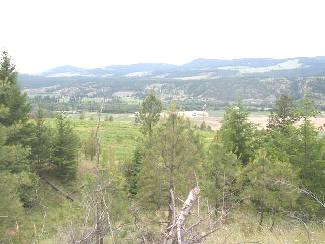 Main Photo: 6520 OLD HIGHWAY 5 in : Heffley Lots/Acreage for sale (Kamloops)  : MLS® # 135004