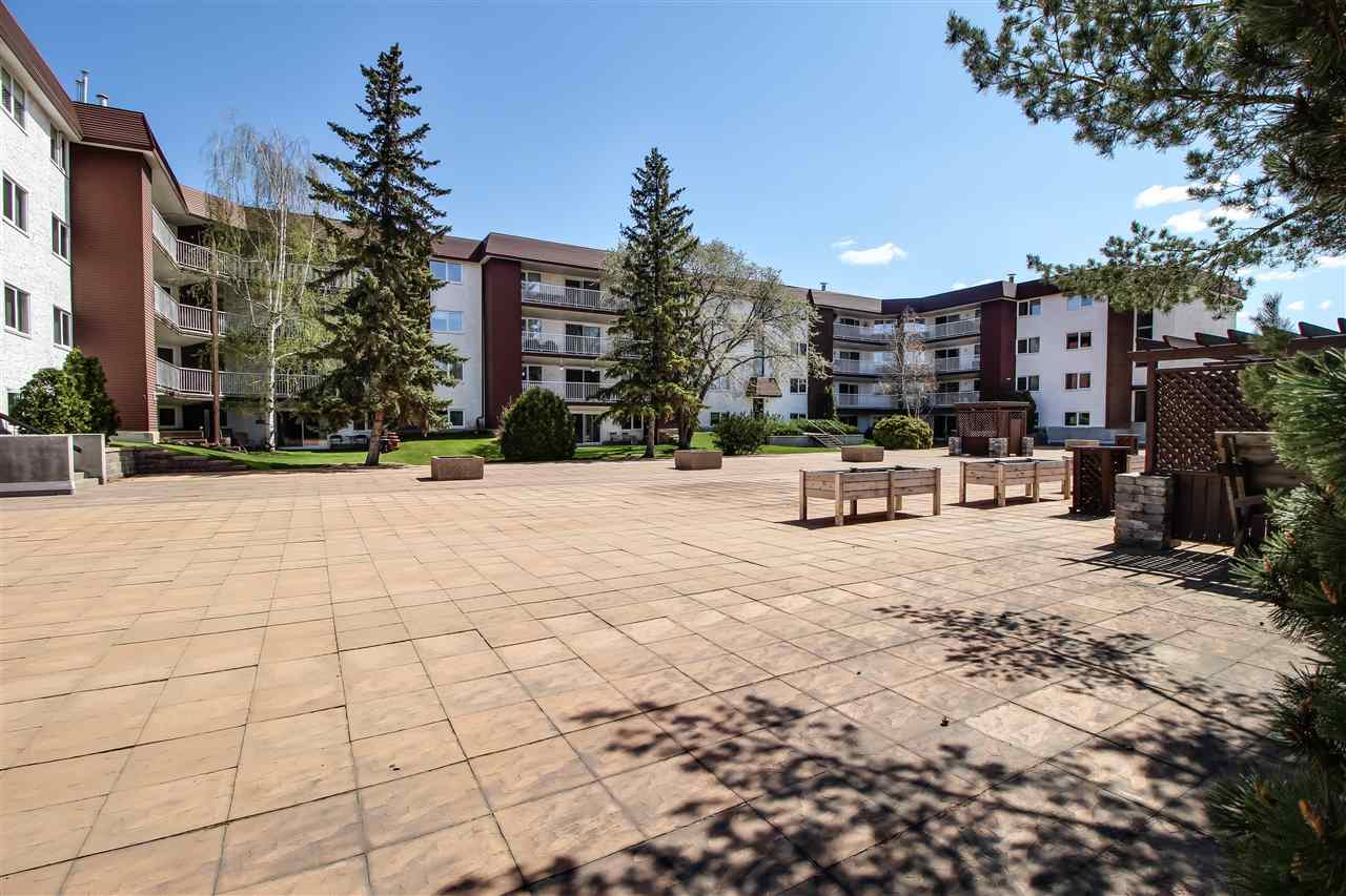 Main Photo: 206 14810 51 Avenue in Edmonton: Zone 14 Condo for sale : MLS(r) # E4063550