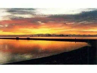 Main Photo: #208-1120 Tsatsu Shores Dr. in Delta: English Bluff Condo for sale (Tsawwassen)  : MLS® # V926589