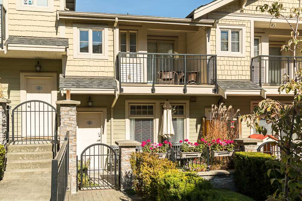 "Main Photo: 36 245 FRANCIS Way in New Westminster: Fraserview NW Townhouse for sale in ""GLENBROOKE @ VICTORIA HILL"" : MLS(r) # R2108717"