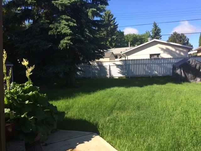 Photo 19: 20 SEYMORE Crescent: St. Albert House for sale : MLS(r) # E4069235