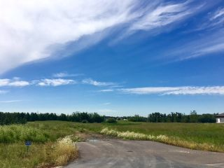 Main Photo: 490 50450 Range Road 234: Rural Leduc County Rural Land/Vacant Lot for sale : MLS® # E4075067