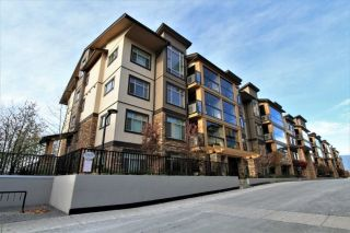 "Main Photo: 217 12635 190A Street in Pitt Meadows: Mid Meadows Condo for sale in ""CEDAR DOWNS"" : MLS® # R2220246"