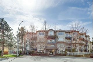 "Main Photo: 213 8115 121A Street in Surrey: Queen Mary Park Surrey Condo for sale in ""The Crossing"" : MLS®# R2251824"