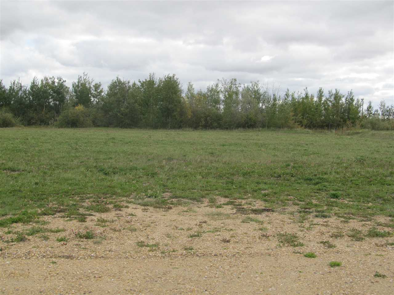 Photo 4: 59512 RR 255: Rural Westlock County Rural Land/Vacant Lot for sale : MLS(r) # E4037975