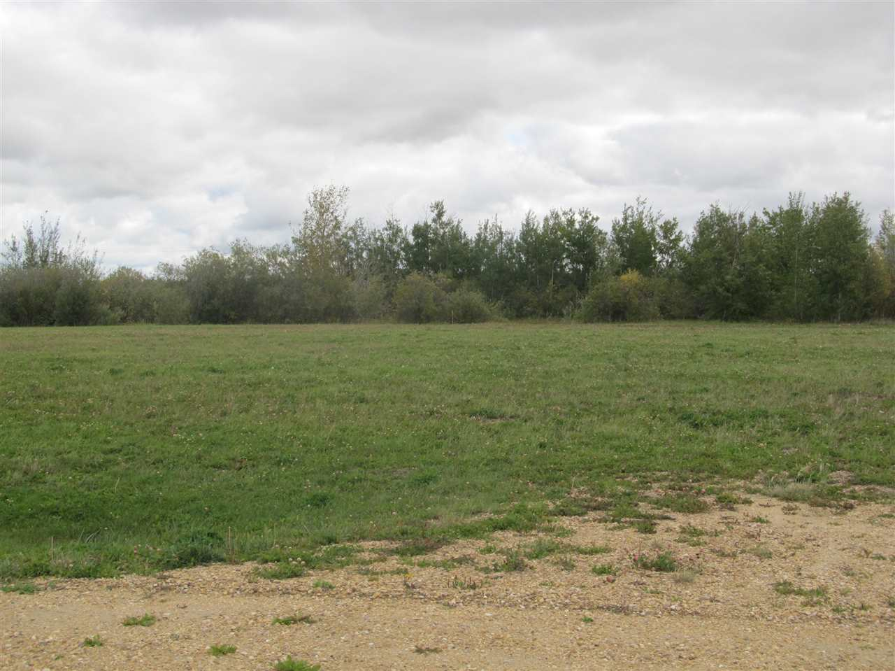 Photo 3: 59512 RR 255: Rural Westlock County Rural Land/Vacant Lot for sale : MLS(r) # E4037975