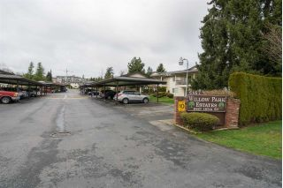 "Main Photo: 29 6467 197 Street in Langley: Willoughby Heights Townhouse for sale in ""Willow Park Estates"" : MLS® # R2239445"