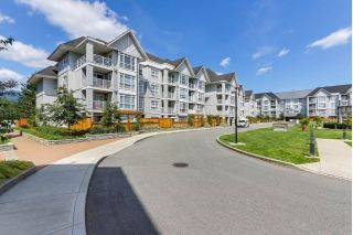 Main Photo: 407 3142 ST JOHNS Street in Port Moody: Port Moody Centre Condo for sale : MLS®# R2284334