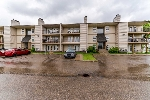 Main Photo: 203 10528 29 Avenue in Edmonton: Zone 16 Condo for sale : MLS(r) # E4065883