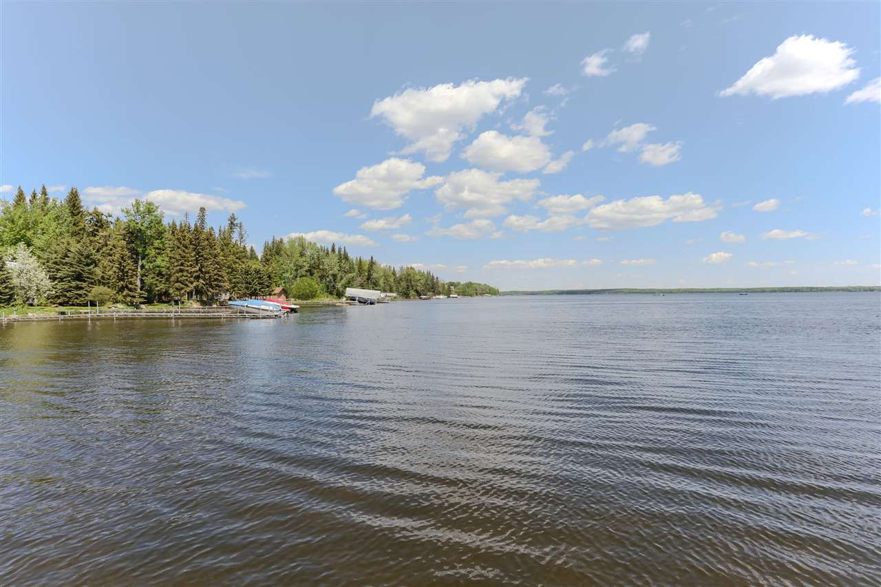 Photo 30: 3 Avalon Wynd: Rural Wetaskiwin County House for sale : MLS® # E4066796