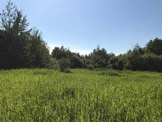 Main Photo: South half NE 14 60 14 w4TH: Rural Smoky Lake County Rural Land/Vacant Lot for sale : MLS(r) # E4073031