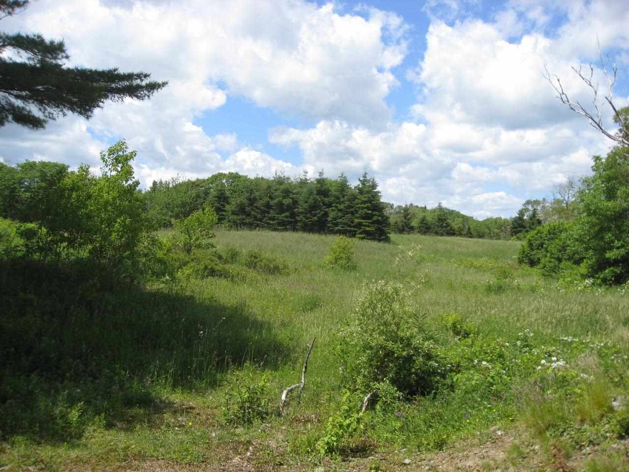 Photo 2: Photos: Lot 1-AD Borgels Drive in Chester Basin: 405-Lunenburg County Vacant Land for sale (South Shore)  : MLS® # 201615692