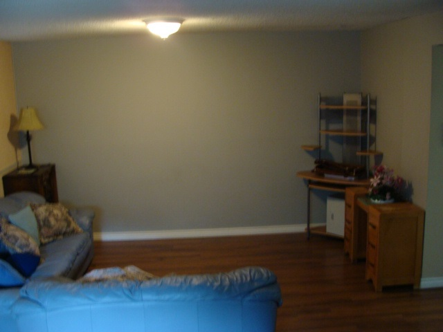 Large/spacious family room in the basement.