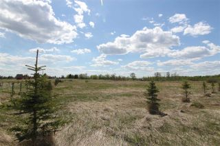 Main Photo: 326 52349 RR 222 Road: Rural Strathcona County Rural Land/Vacant Lot for sale : MLS® # E4073959