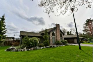 Main Photo: 6250 KILLARNEY Drive in Surrey: Sullivan Station House for sale : MLS®# R2257736
