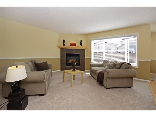 Photo 2: 562 CHAPARRAL Drive SE in Calgary: Chaparral House for sale : MLS(r) # C4006558