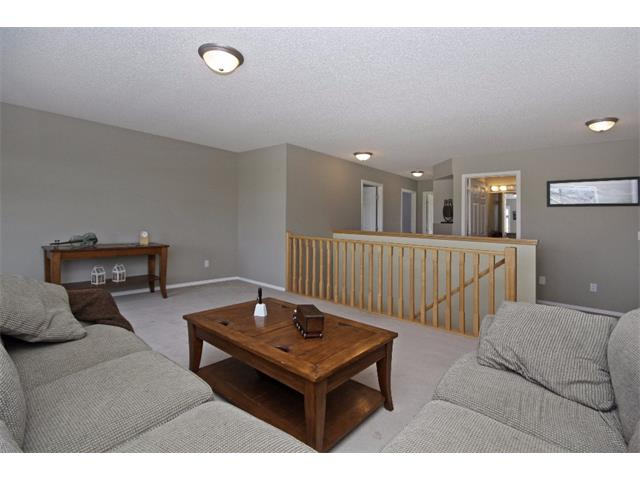 Photo 11: 562 CHAPARRAL Drive SE in Calgary: Chaparral House for sale : MLS(r) # C4006558